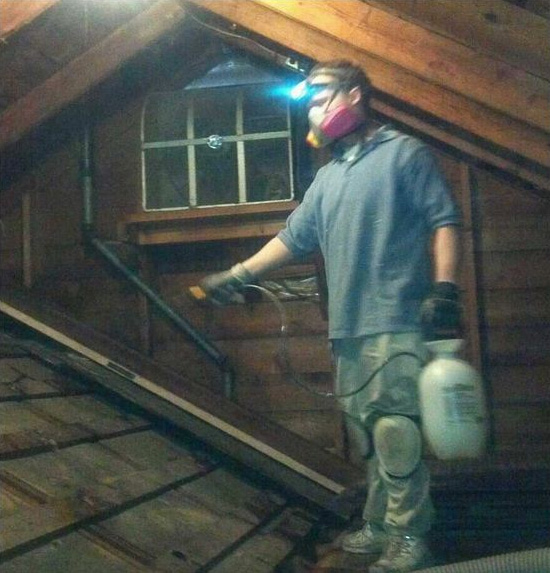 sanitizing an attic