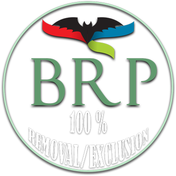 Logo: Bat Removal Pro 100% Removal and Exclusion