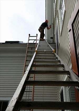 creature removal man-on-ladder-doing-exclusion compressed file