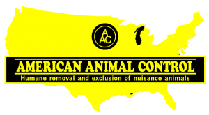 Photo: american animal control manufacturer of Ridge Guard