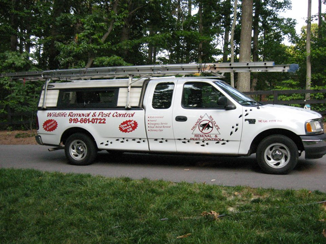 Photo: Triangle Wildlife  Removal truck on Apex, NC page