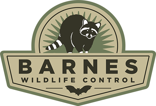 Graphic; Barnes Wildlife Control Digital Badge At Dayton Montgomery County Bat Removal page