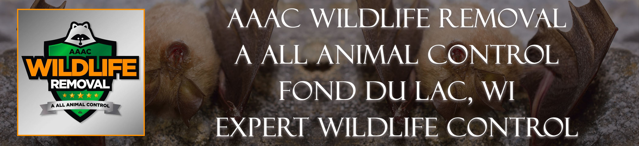 aaac-wildlife-removal-Fond du Lac-wisconsin