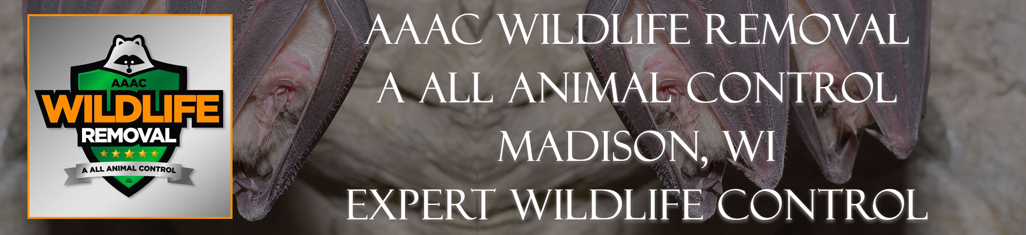 aaac-wildlife-removal-madison-wisconsin