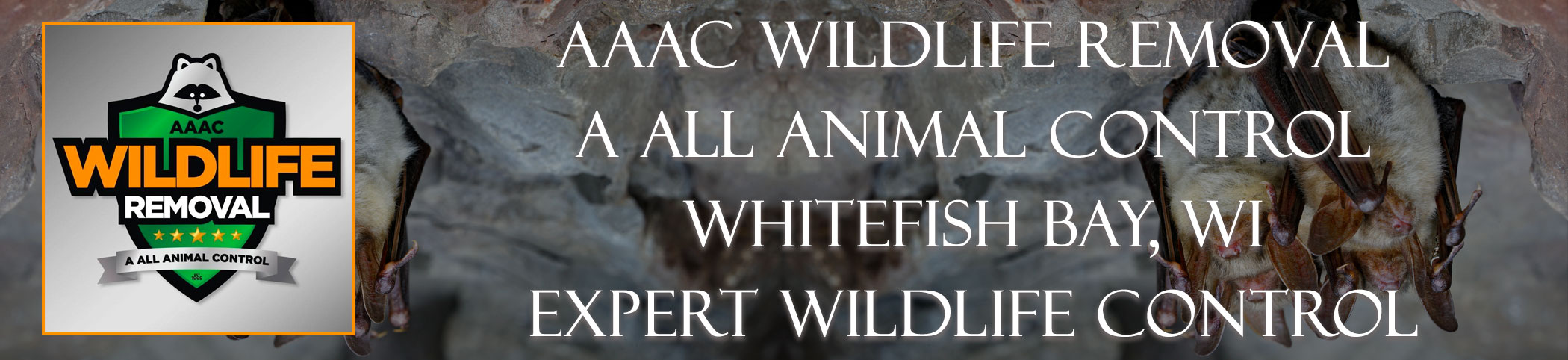 aaac-wildlife-removal-Whitefish Bay-wisconsin