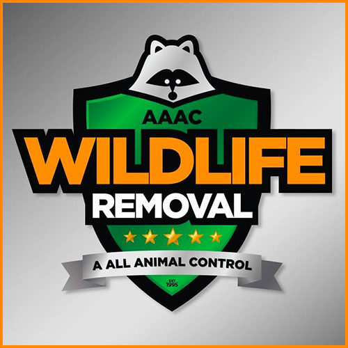 aaac wildlife removal logo