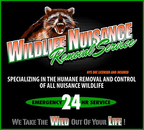 Wildlife-Nuisance-Removal-logo