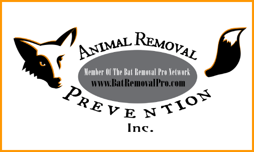 West Valley City Bat Removal digital badge