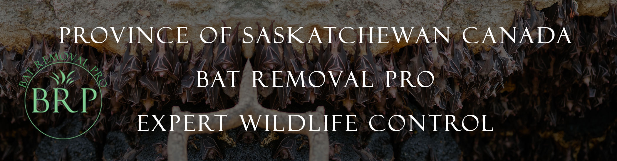 Saskatchewan_canada_image