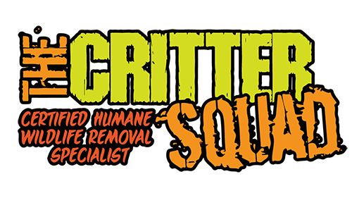THE CRITTER SQUAD HOUSTON BAT REMOVAL SERVICES logo. Best Wildlife Contol In The Houston, TX area