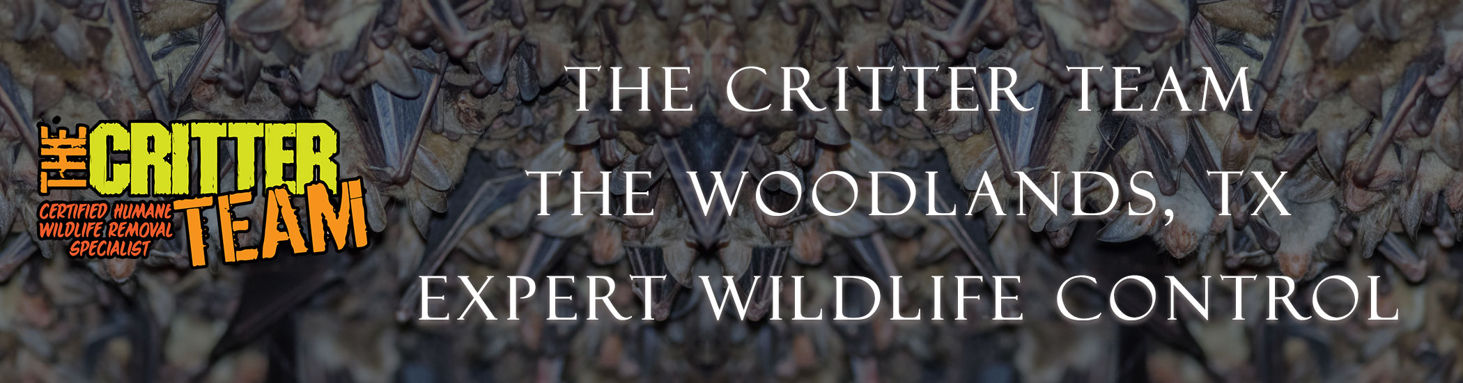 the_woodlands_critter_team_headers