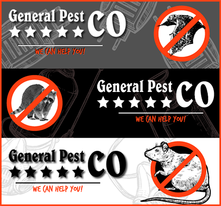 Graphic: General Pest Company Digital Brand at Charlotte, North Carolina Page