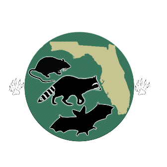 Rats to Bats Jensen Beach Fl always a step ahead of the other bat exclusion companies