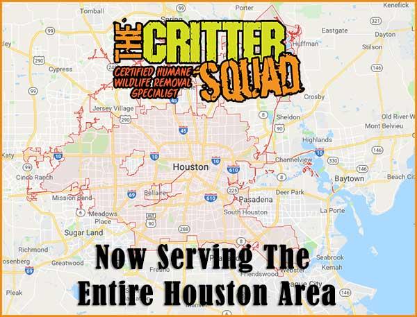 The Critter Squad services the entire houston area