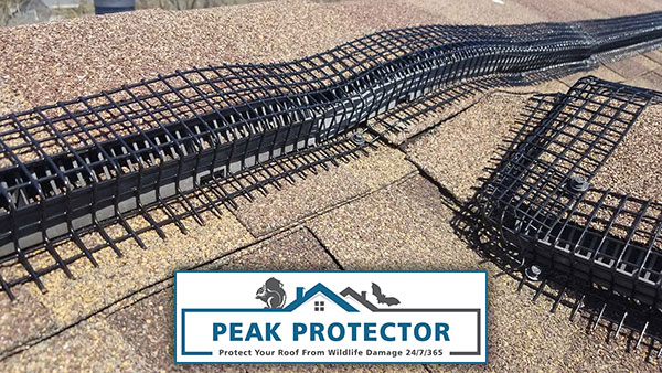 Newly installed Peak Protector Roof Ridge Vent Animal Guards that will protect your ridge vent and conform to uneven roof surfaces.