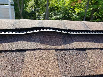 Peak Protector Roof Ridge Vent Animal Guards installed in your home keeps bats out 100% of the time! Guaranteed!