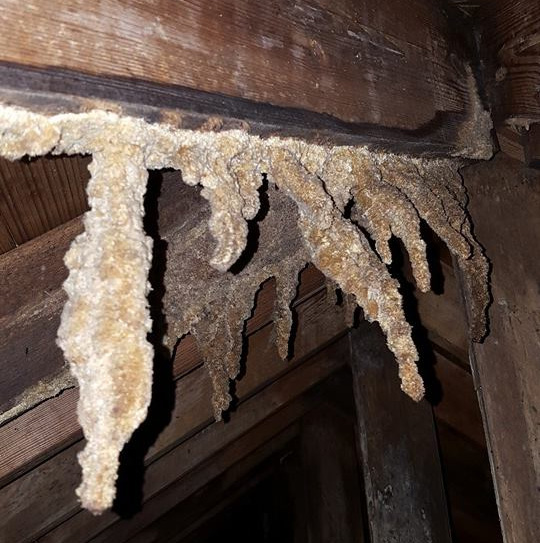 Amazing Stalactites in a