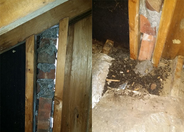 "C.R.N.A.C. received a call, ""Noises in the walls. "" This is what we found, improperly installed chimney, large 3/4 inch gaps, and piles of Bat Guano! Just to let our followers know, this home was inspected twice. Once by an home inspector, then by a poorly trained Wildlife control company photo."