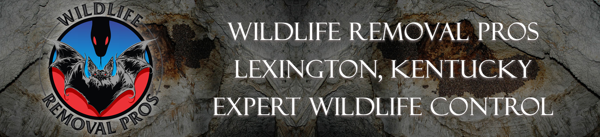 Lexington_kentucky_wildlife_headers