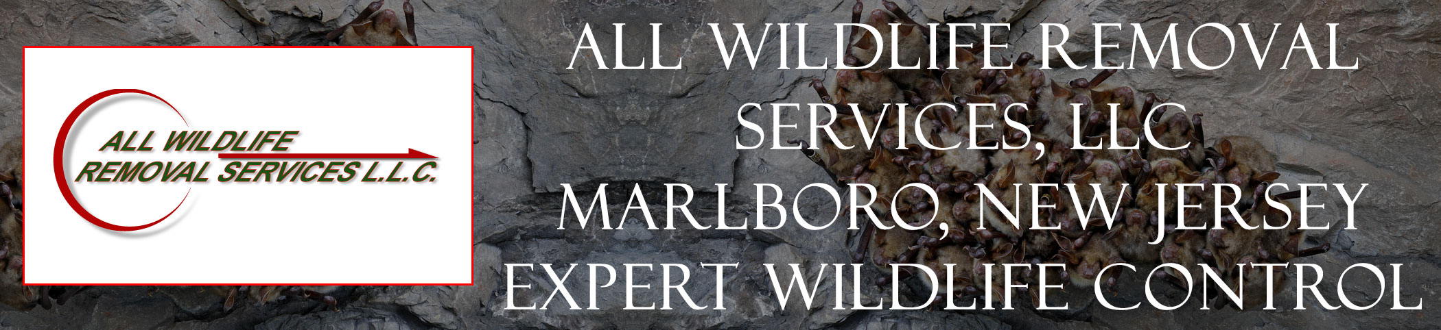 all-wildlife-removal-services-Marlboro-new-jersey-header