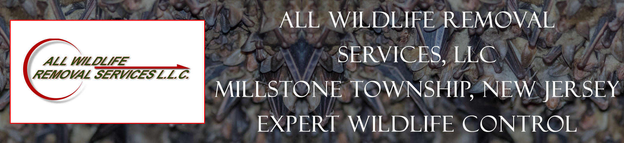 all-wildlife-removal-services-Millstone Township-new-jersey-header