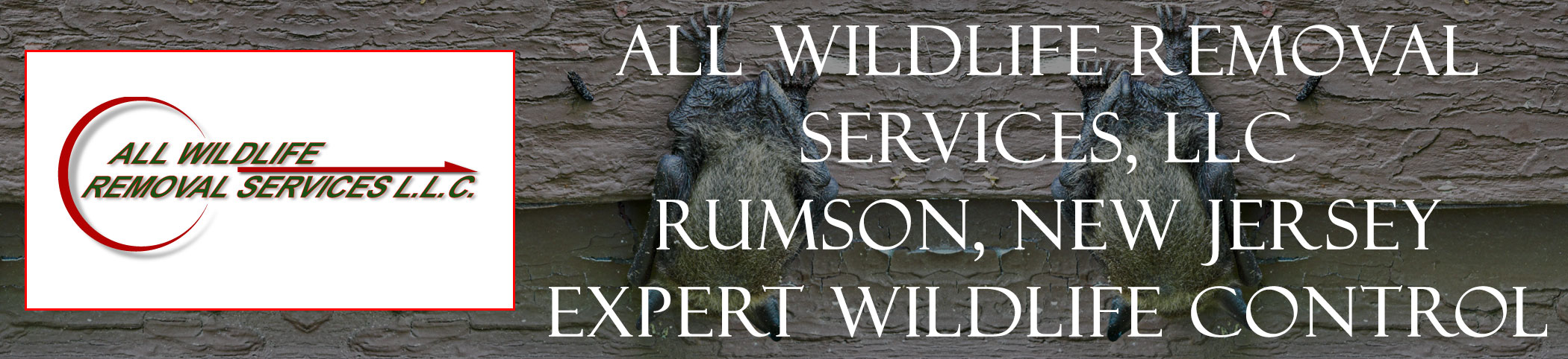 all-wildlife-removal-services-Rumson-new-jersey-header