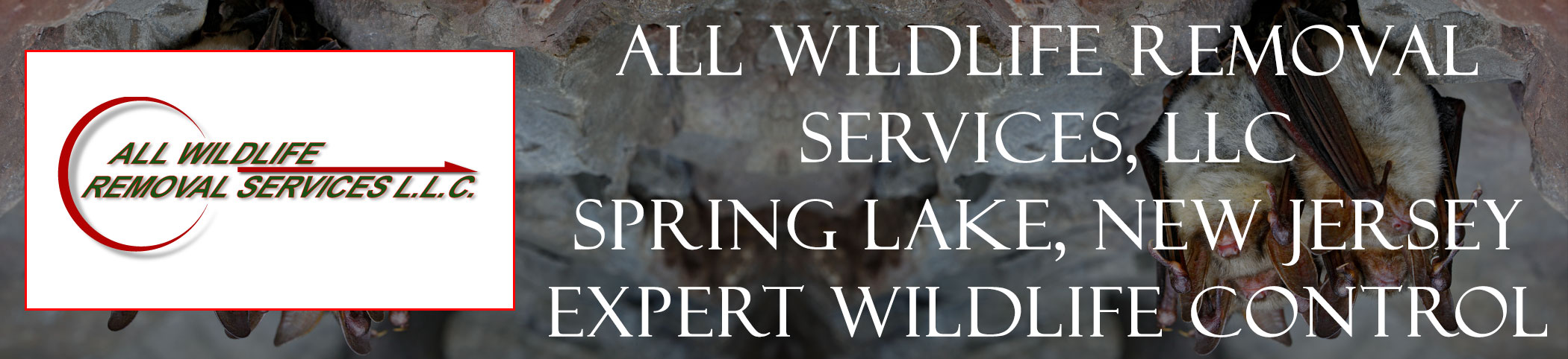 all-wildlife-removal-services-Spring Lake-new-jersey-header