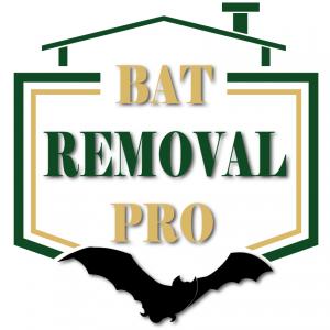 Bat Removal Pro