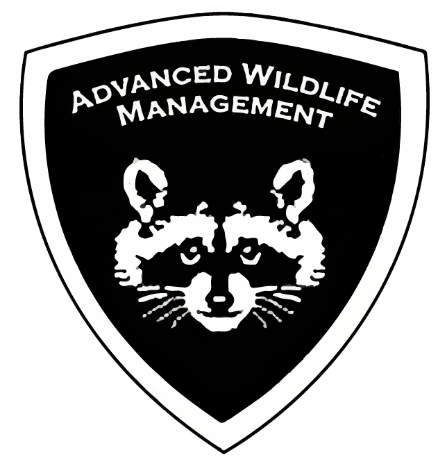 Graphic: Logo for Advanced Wildlife Management Cincinnati Wildlife Animal Removal page